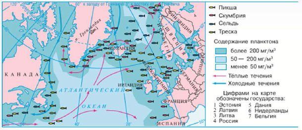 Сообщение о атлантическом океане 7 класс