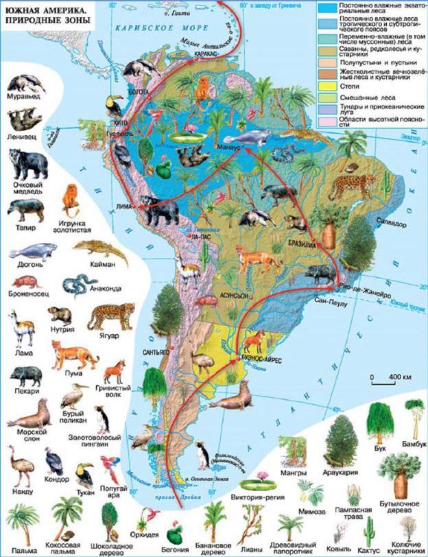 Культура южной америки реферат 3713